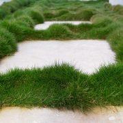 Zjoysia Plant Tiles